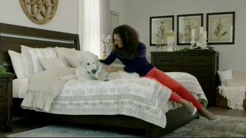 Ashley HomeStore Black Friday Event TV Spot, 'Welcome Home'