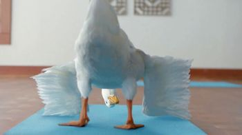 Aflac One Day Pay TV Spot, 'Yoga Class'