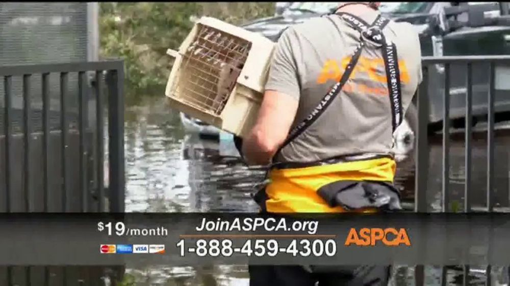 ASPCA TV Commercial, 'Natural Disaster Rescue'