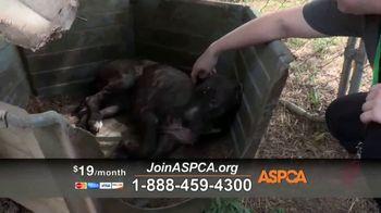 ASPCA TV Spot, 'Natural Disaster Rescue' - Thumbnail 8
