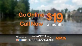 ASPCA TV Spot, 'Natural Disaster Rescue' - Thumbnail 7