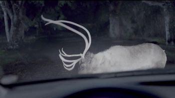 Maaco Bumper Paint Special TV Spot, 'Deer' - Thumbnail 2