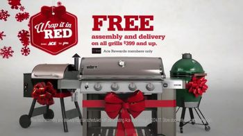 ACE Hardware Wrap It in Red TV Spot, 'The Best Brands Make the Best Gifts'