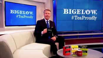 Bigelow Tea TV Spot, 'The Right Thing to Do' Featuring Phil Simms - Thumbnail 3