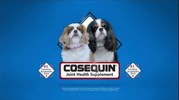 Cosequin Joint Health Supplement TV Spot, 'Makes a Great Stocking Stuffer!' - Thumbnail 1