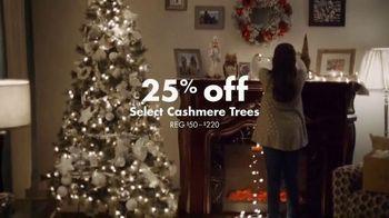 Big Lots TV Spot, 'Share the Joy: Cashmere Trees' - Thumbnail 8