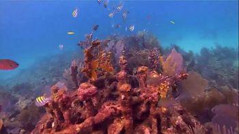 The Florida Keys & Key West TV Spot, 'Diving' - Thumbnail 6