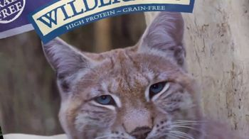 Blue Buffalo Wilderness Cat Food TV Spot, 'Lynx Spirit' - Thumbnail 4