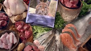 Blue Buffalo Wilderness Cat Food TV Spot, 'Lynx Spirit' - Thumbnail 5