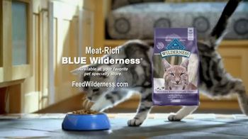 Blue Buffalo Wilderness Cat Food TV Spot, 'Lynx Spirit' - Thumbnail 6