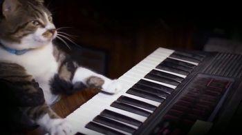 The Pianist thumbnail