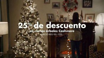 Big Lots TV Spot, 'Felicidad' canción de Three Dog Night [Spanish] - Thumbnail 7