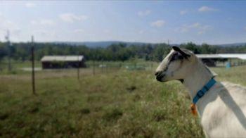 Heifer International TV Spot, 'A Gift That Really Matters' - Thumbnail 1