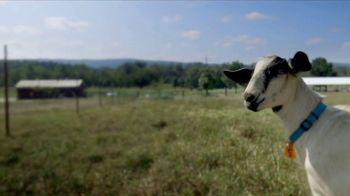 Heifer International TV Spot, 'A Gift That Really Matters' - Thumbnail 2