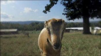 Heifer International TV Spot, 'A Gift That Really Matters' - Thumbnail 6