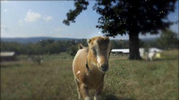 Heifer International TV Spot, 'A Gift That Really Matters' - Thumbnail 7