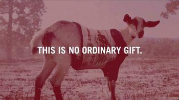Heifer International TV Spot, 'A Gift That Really Matters' - Thumbnail 9