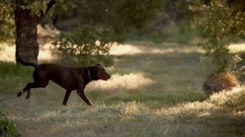 Blue Buffalo Wilderness Dog Food TV Spot, 'Wolf Spirit' - Thumbnail 1