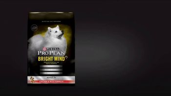 Purina Pro Plan Bright Mind Adult 7+ TV Spot, 'Lady: Mental Sharpness' - Thumbnail 4