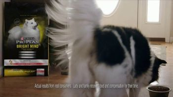 Purina Pro Plan Bright Mind Adult 7+ TV Spot, 'Lady: Mental Sharpness' - Thumbnail 5