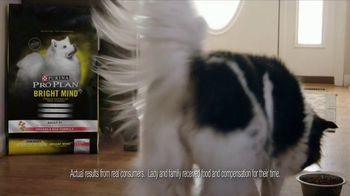 Purina Pro Plan Bright Mind Adult 7+ TV Spot, 'Lady: Mental Sharpness' - Thumbnail 5