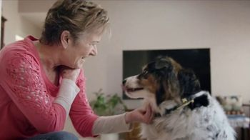 Purina Pro Plan Bright Mind Adult 7+ TV Spot, 'Lady: Mental Sharpness' - Thumbnail 7