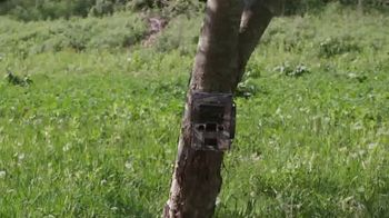 Reconyx TV Spot, 'Not All Game Cameras Are Created Equal' - Thumbnail 3