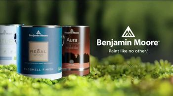 Benjamin Moore TV Spot, 'Inspired by Nature: Don't Leave Your Couch' - Thumbnail 8