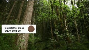 Benjamin Moore TV Spot, 'Inspired by Nature: Don't Leave Your Couch' - Thumbnail 5