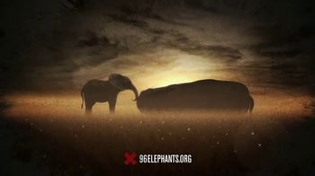 Wildlife Conservation Society TV Spot, '96Elephants: Protect Their Home'