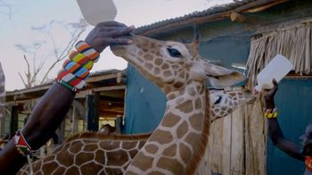 San Diego Zoo Global Wildlife Conservancy TV Spot, 'Save Giraffes' - Thumbnail 7