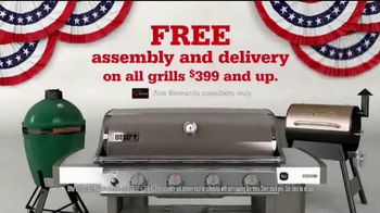 ACE Hardware 4th of July Sale TV Spot, 'The Right Grill' - 1182 commercial airings