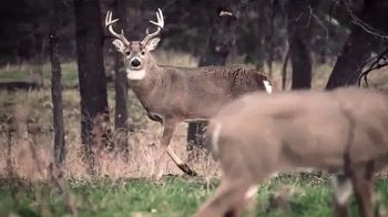 Wildlife Research Center Scent Killer Gold TV Spot, 'Attacks Odors' - Thumbnail 8