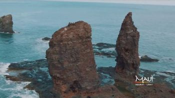 Visit Maui TV Spot, 'Land, Air and Sea' - Thumbnail 4