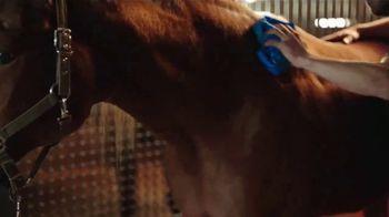 WeatherTech Soaker TV Spot, 'The Ultimate Drying Towel' - Thumbnail 4