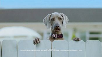 K9 Advantix II TV Spot, 'Blooper Reel' - Thumbnail 2