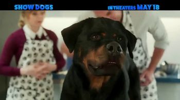Show Dogs - Thumbnail 10