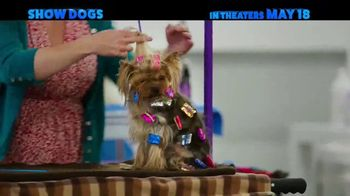 Show Dogs - Thumbnail 4