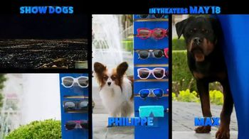Show Dogs - Thumbnail 5