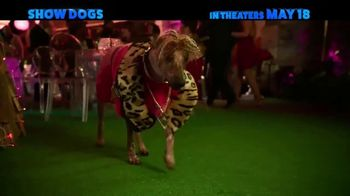 Show Dogs - Thumbnail 7