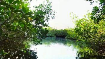 The Beaches of Fort Myers and Sanibel TV Spot, 'Islandology No. 36' - Thumbnail 6