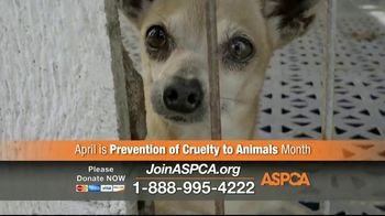 ASPCA TV Spot, 'April Is Prevention of Cruelty to Animals Month' - Thumbnail 4