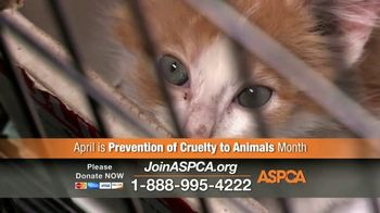 ASPCA TV Spot, 'April Is Prevention of Cruelty to Animals Month' - Thumbnail 5
