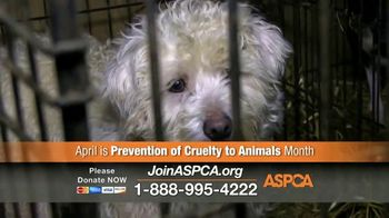 ASPCA TV Spot, 'April Is Prevention of Cruelty to Animals Month' - Thumbnail 7