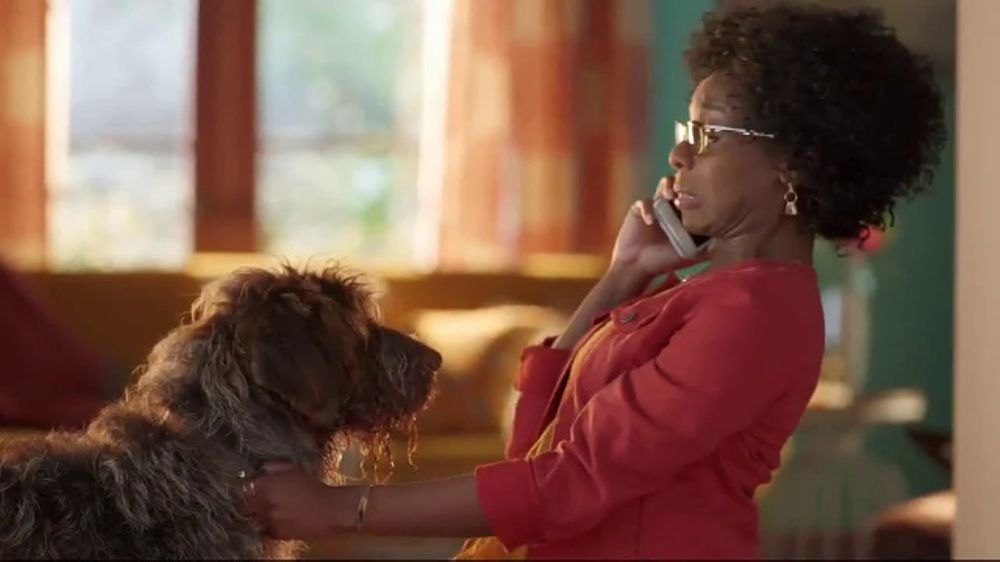 discover card social security number alerts tv commercial dog kiss