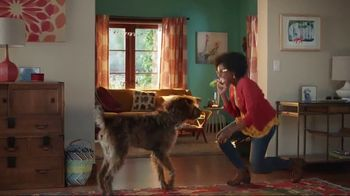 Discover Card Social Security Number Alerts TV Spot, 'Dog Kiss' - Thumbnail 7