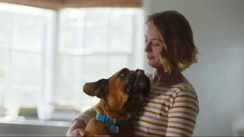 Zoetis TV Spot, 'Itching for Help' - Thumbnail 9