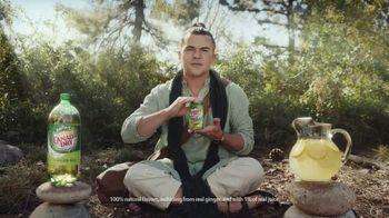 Canada Dry Ginger Ale and Lemonade TV Spot, 'Nirvana' - Thumbnail 4