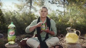 Canada Dry Ginger Ale and Lemonade TV Spot, 'Nirvana' - 5758 commercial airings