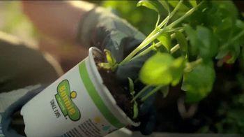 The Home Depot TV Spot, 'Grow a Garden: Bonnie Herbs & Vegetables' - Thumbnail 5